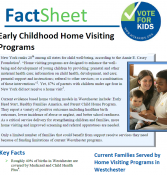 Vote for Kids Early Childhood Home Visiting Fact Sheet
